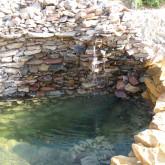 Ogród Lidzbark