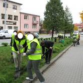 Pielęgnacja zieleni miejskiej